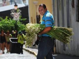 El vendedor de azucenas del Viejo San Juan (Ricardo Alcaraz/Diálogo)