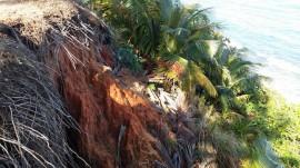 Erosión en Puerta de Tierra. (Suministrada)
