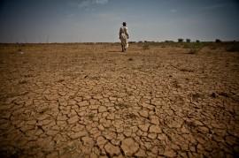 Los obstáculos para erradicar el hambre en África no se limitan a la pobreza, sino también el cambio climático que afecta a las tierras de cultivo y destruye las cosechas en todo el continente. (Suministrada-Flickr Commons)