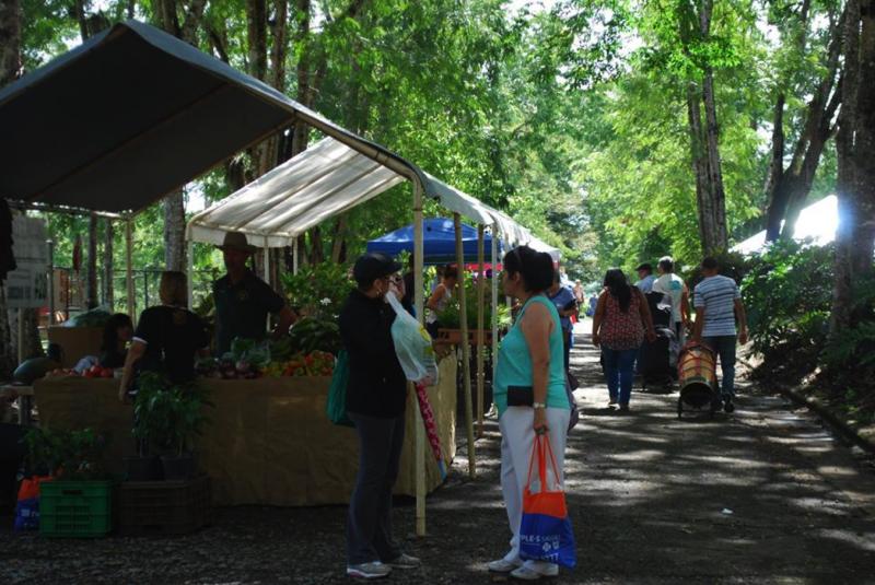 En el evento habrá recorridos por el parque, artesanías, talleres de fotografía, Tai chi, acuaponía y  concurso de baile libres de costo. (Suministrada)