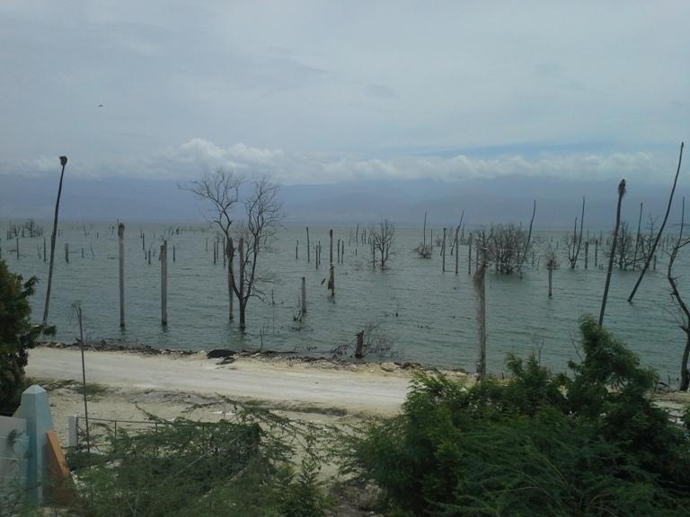El Lago Enriquillo fue declarado Parque Nacional en 1974 y forma parte de la Reserva de la Biosfera integrada por Jaragua-Bahoruco-Enriquillo, instituida en el año 2002 por la Organización de las Naciones Unidas (UNESCO). (Suministrada)