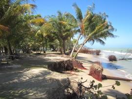 En las Parcelas Suárez, en Loíza,  el mar ya se encuentra tierra adentro. (Dra. Maritza Barreto Orta / Suministrada)