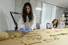 Jessica Carnivali y Britgette Troche, estudiantes del Departamento de Sociología y Antropología de la UPR-RP, trabajando con unos restos precolombinos. (Ricardo Alcaraz / Diálogo)