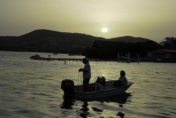 La vida en Culebra permite una cercanía constante con la naturaleza, que se da gracias al poco desarrollo urbano que hay en la isla municipio. (Ricardo Alcaraz/dialogo-test.upr.edu)