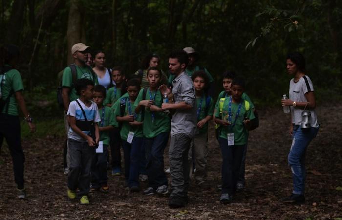 Estudios sugieren que el contacto de los niños con áreas forestales aporta al mejoramiento de su condición. (David Pérez/Diálogo)