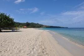 Vida Marina fue reconocida por restaurar varias localizaciones de la costa noroeste de Puerto Rico. (Suministrada)