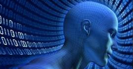 Cuerpo digital (Suministrada)