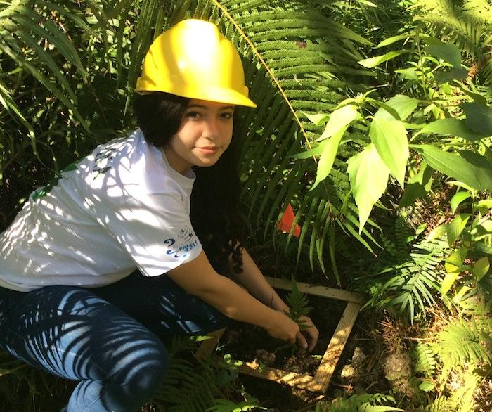 Estudiante Cristina Crespo de la clase Otoño 2014, recopilando muestras para su proyecto que comparaba la intensidad de luz de la biomasa de las plantas debajo del reflector. (Suministrada)