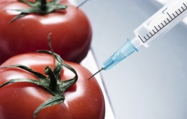 La Ley para el Etiquetado Seguro y Preciso de Alimentos da paso a que la Administración de Drogas y Alimentos permita pero no requiera que los alimentos genéticamente modificados señalen en sus etiquetas que son de esta naturaleza. (Suministrada)