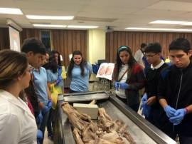 Estudiantes de escuelas públicas, especializadas en ciencias y matemáticas, visitan distintas escuelas del Recinto de Ciencias Médicas para familiarizarse con los currículos. Aquí, durante su visita a la clase de Anatomía. (Suministrada RCM)