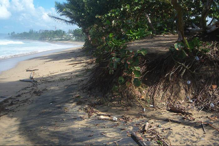 """""""Estamos perdiendo nuestras costas por un sistema de ordenamiento del territorio inefectivo, que sigue promoviendo la construcción en la zona marítimo terrestre y estas malas decisiones están comenzando a pasarnos la factura"""" , sostuvo el doctor Alejandro Torres-Abreu, coordinador de PLAC"""