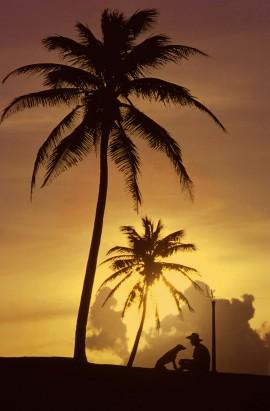 Foto tomada en el Viejo San Juan, durante el año 1983. (Ricardo Alcaraz / Diálogo)