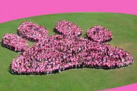 Durante todo el mes se realizarán actividades emblemáticas como muestra del respaldo de la institución con esta causa. Entre estas, usar la camiseta rosada todos los viernes del mes de octubre.  (Suministrada)
