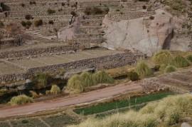 Algunas terrazas construidas por los indígenas atacameños en la aldea de Caspana, en el Alto Loa, en la región de Antofagasta, en el norte de Chile. Esta técnica milenaria de cultivo representa una adaptación al clima y garantiza el derecho a la alimentación de estos pueblos del altiplano andino. Crédito: Marianela Jarroud/IPS