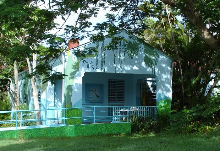 El CIC se ubica en el Instituto de Investigaciones Interdisciplinarias de la UPR-Cayey. (Suministrada)