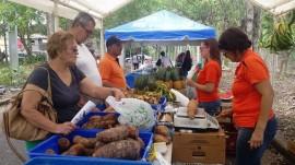 Mercado Agrícola y Artesanal Verdes Sombras. (Suministrada)