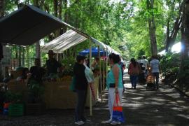 Mercado Agrícola UPR Cayey (Suministrada)