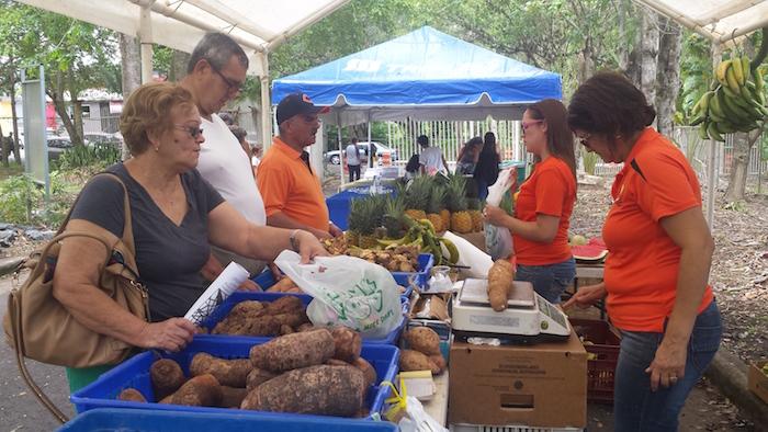 Mercado Agricola y Artesanal en UPR-Cayey.