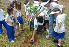 Actividad de siembra de árboles en el Jardín Botánico, con la participación de distintos centro pre-escolares de distintos recintos de la UPR/mayo 2009