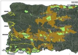 Proporción del bosque modelo. (Suministrada)