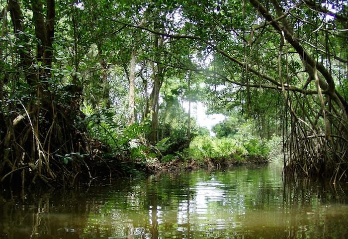 Reserva Natural Boquillas