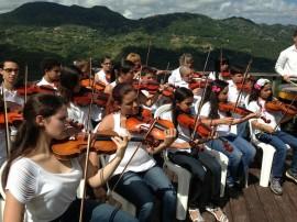 Conjunto de violines. (Suministrada)