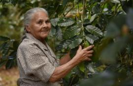Gracias a la agricultura, doña Bienvenida Santana Ramos logró sacar adelante a su familia luego de la muerte de su esposo. (Ricardo Alcaraz / Diálogo)