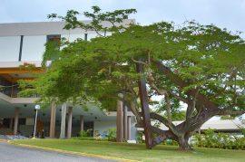 Foto edificio Adm. UPRA