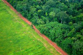 La deforestación es uno de las principales fuentes de emisión de gases de efecto invernadero en América Latina, como en esta área de Rio Branco, en el norteño estado de Acre, en Brasil. Crédito: Kate Evans / Centro para la Investigación Forestal Internacional