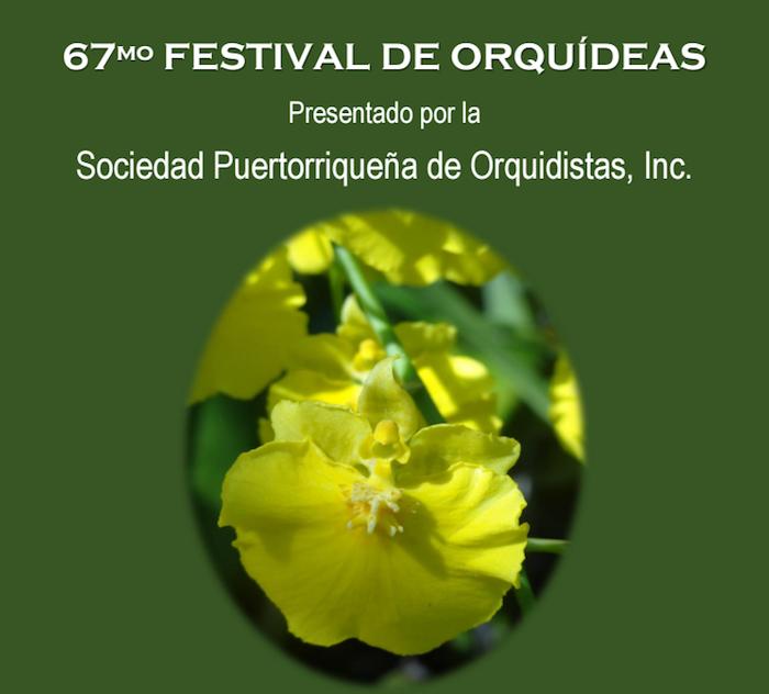 Promoción del Festival de Orquídeas. (Suministrada)