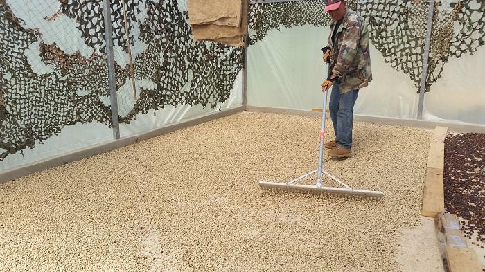 La organización Cafiesencia realizó un estudio, durante el 2015, sobre Agro-Ecoturismo del Café. (Suministrada)