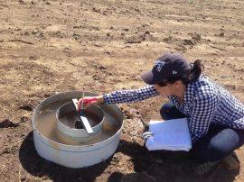 Noelymar González Maldonado participa en una investigación que busca establecer estrategias de manejo para remediar suelos sódicos [de alto contenido de sodio]. (Suministrada)