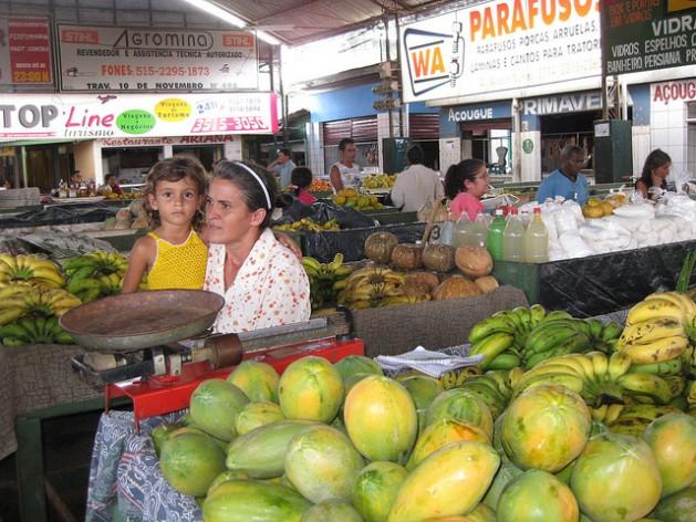 Mujeres como Aparecida Moraes, vendedora en un mercado popular en la ciudad de Altamira, en el norte de Brasil, integran el grupo de la población latinoamericana con mayor riesgo de recaer en la pobreza. Crédito: Mario Osava/IPS