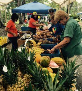 Mercado Agrícola y Artesanal de la UPR Cayey. (Suministrada)