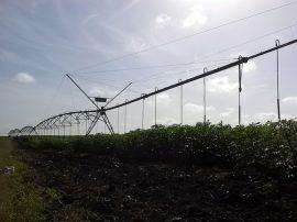 Una de las máquinas de pivote central para el riego por aspersión con que cuenta la finca de La Yuraguana y que varias veces este año no pudo usarse por falta de abastecimiento de agua de un embalse cercano, debido a la sequía que azota a la provincia de Holguín y otras muchas zonas de Cuba. Crédito: Ivet González/IPS