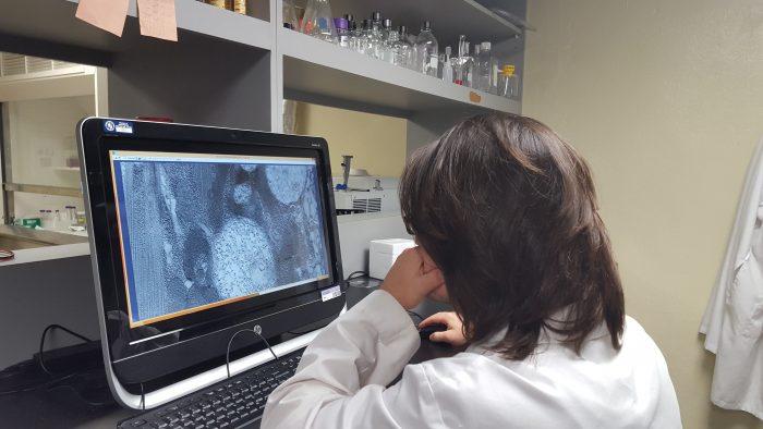 Diego Buitrago en laboratorio – Est UPR Carolina 2
