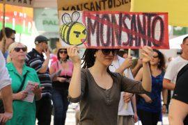 Muchos paises de Latinoamerica han puesto resistencia al establecimiento de la compañia de productos transgenicos. (Suministrada)