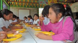 alimentacion-escolar-honduras
