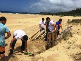 Vida Marina de la UPR-Aguadilla en proyecto de restauracion de dunas. (Suministrada)