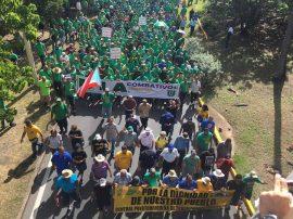 Pequeña porción de manifestantes. (José Encarnación / Diálogo)