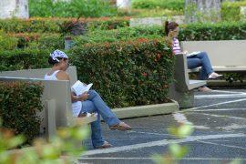 Dos estudiantes disfrutan del sosiego de la lectura en la icónica Plaza Antonia Martínez, en el Recinto de Río Piedras. (Ricardo Alcaraz / Diálogo)
