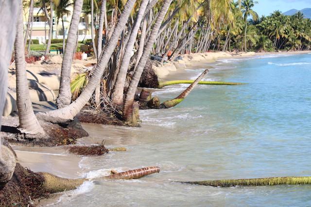 Ejemplo de erosión costera en Palmas del Mar, Humacao. (Osvaldo Cortés / Diálogo)
