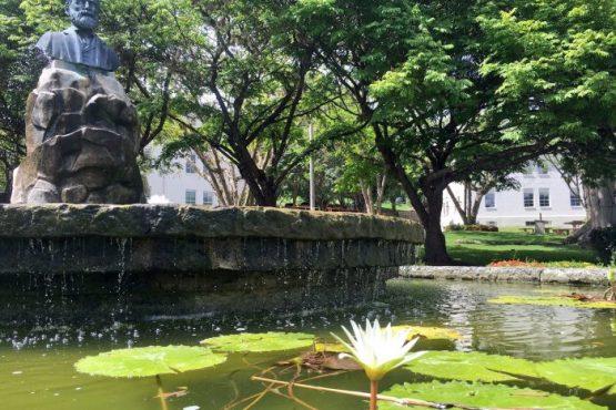 plaza upr cayey