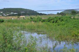 Un lago artificial para juntar agua en una granja de la isla caribeña de Antigua. Crédito: Desmond Brown/IPS.