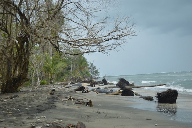 El Parque Nacional Cahuita, en la oriental costa caribeña de Costa Rica, sufre un proceso de erosión costera que está recortando sus playas, pero también bajo el agua hay un impacto del cambio climático sobre los corales. Crédito: Diego Arguedas/IPS