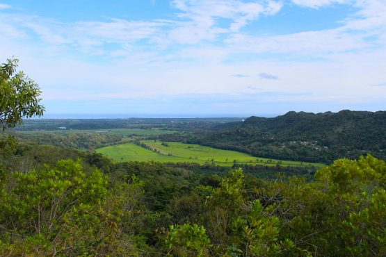 Parte de la zona del karso en Arecibo. (Osvaldo Cortés/Diálogo)