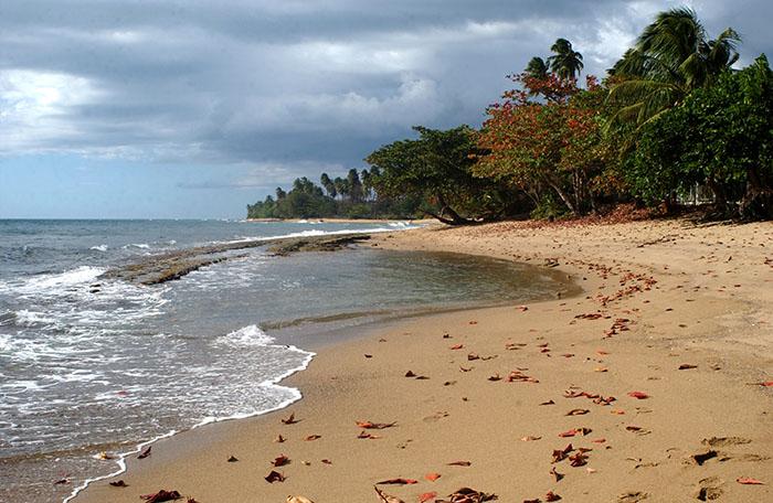 Reserva Marina Playa Tres Palmas en Rincón. (Ricardo Alcaraz / Diálogo)