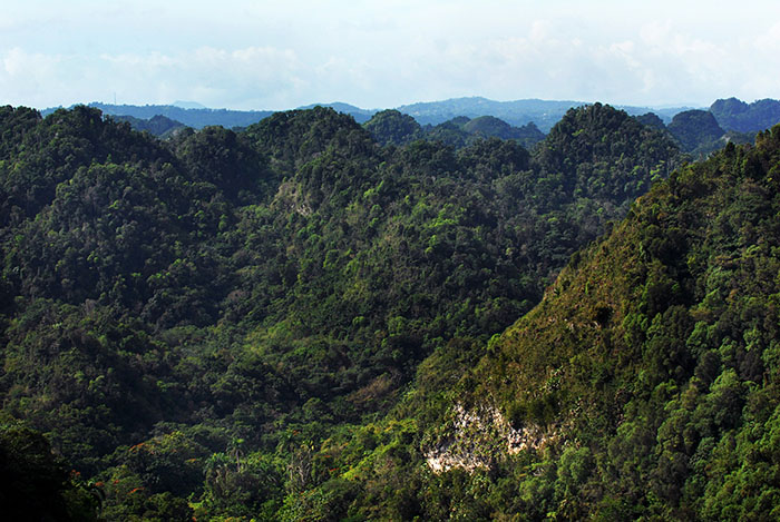 En la zona del karso, en Arecibo/marzo 2010