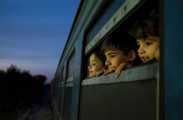 Tres niños miran por la ventana de un tren detenido en un centro de recepción en Gevgelija, Macedonia y donde viajan refugiados de Afganistán, Iraq y Siria. Crédito: Ashley Gilbertson / Unicef