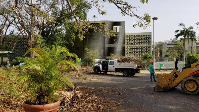 Personal del RUM comenzó el lunes con los trabajos de limpieza del campus. (Cortesía Víctor Díaz).